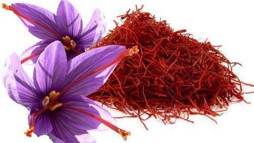 گیاه دارویی به نام طلای سرخ